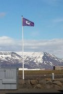 Piratenpartij IJsland met zes zetels in parlement